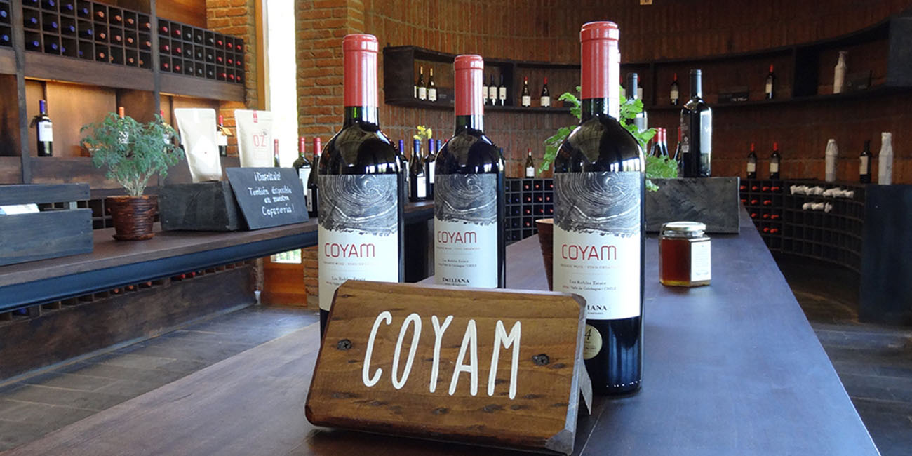 Emiliana Winery Coyam Wine