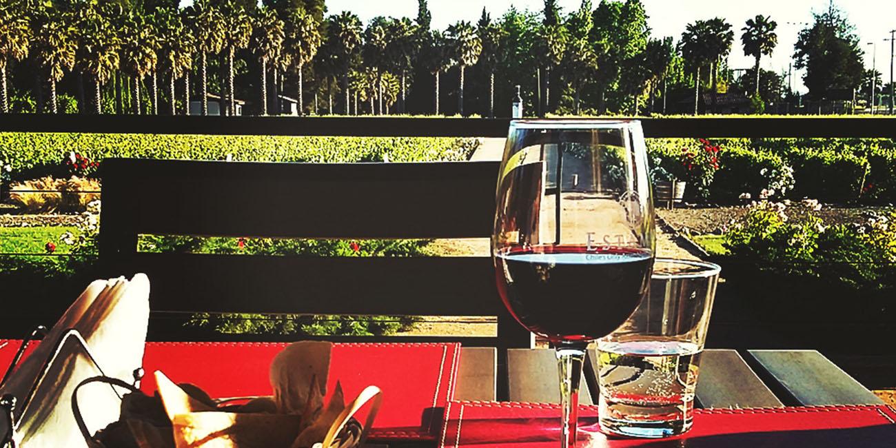Estampa Winery Sunset Bar Views