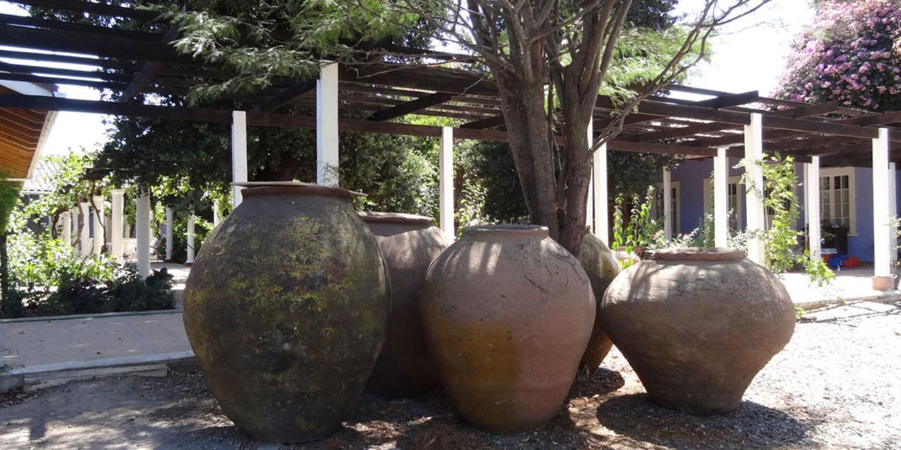 Hotel Quinta Maria Flower Pots