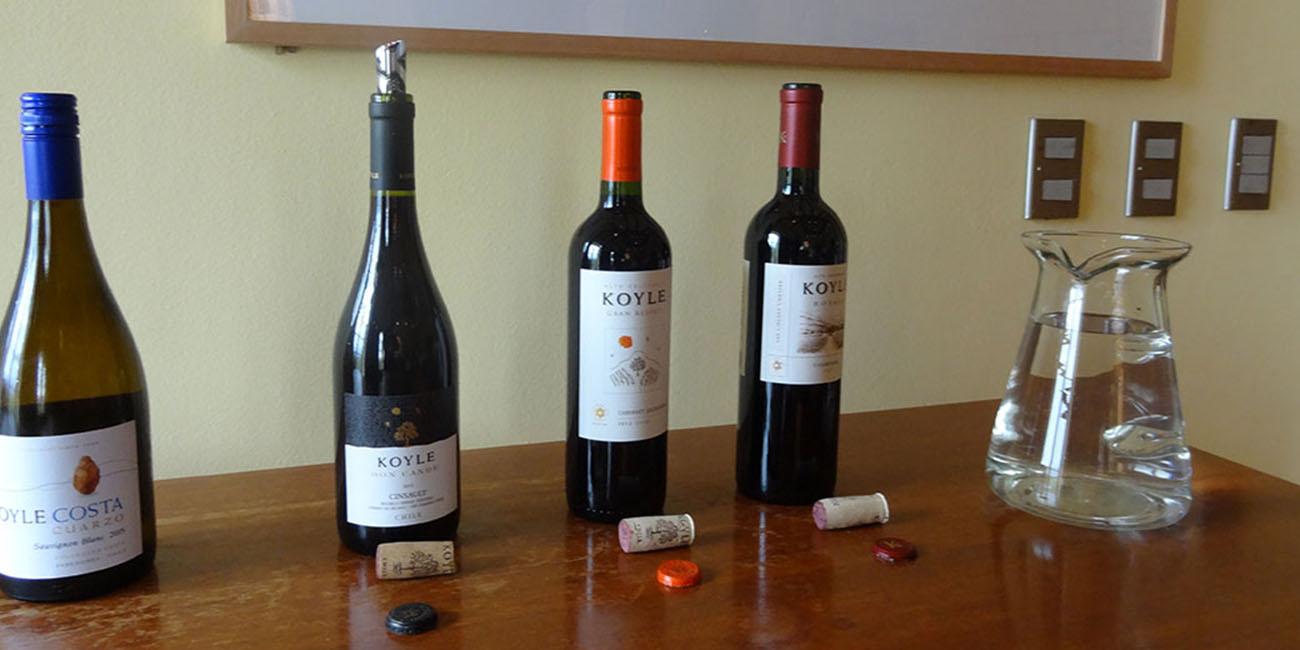 Koyle Wine Tasting