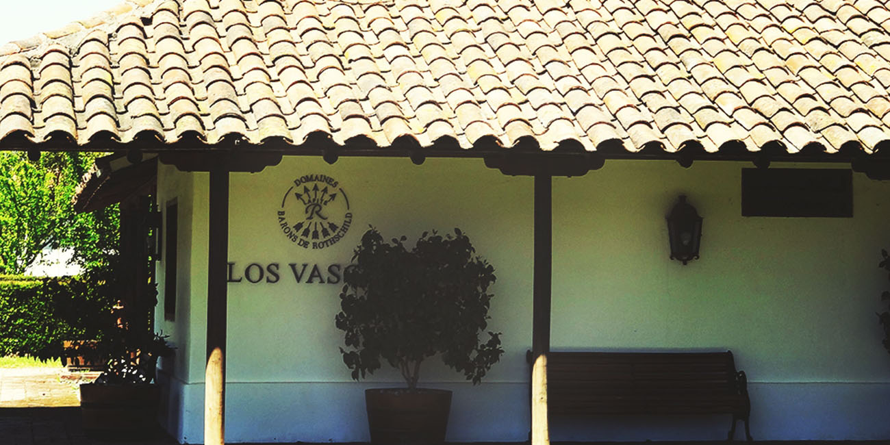 Los Vascos Wine Shop