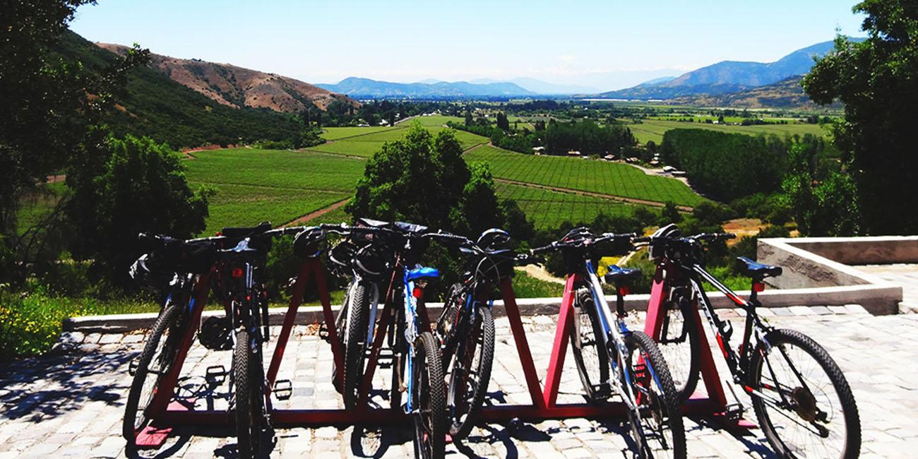 VIK Hotel Bikes