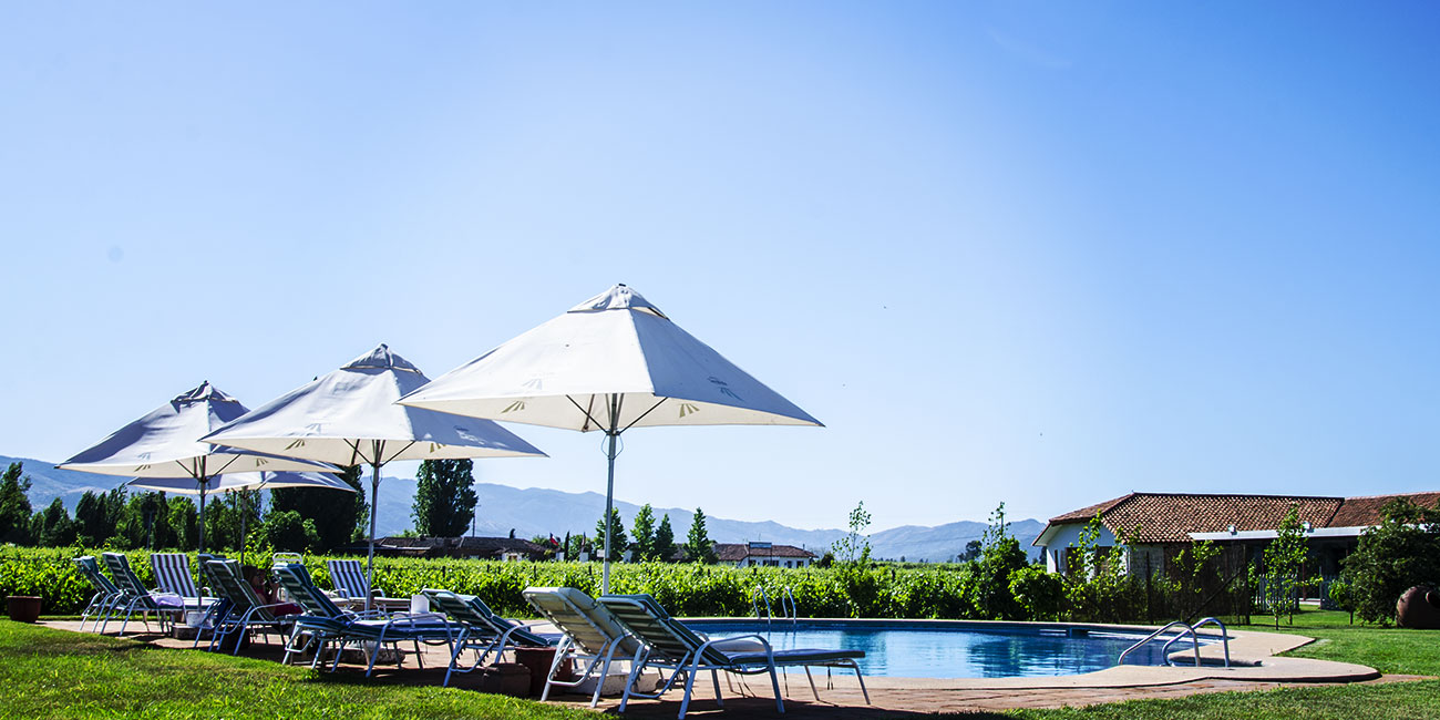 Hotel Terra Vina pool and umbrellas