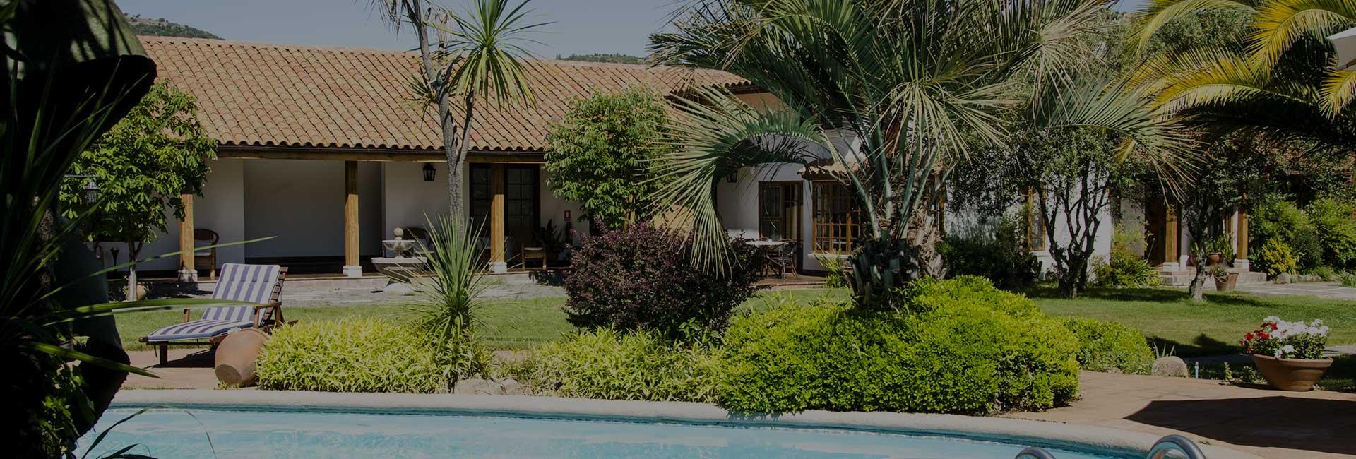 Hotel Solaz Bella Vista Colchagua palm trees